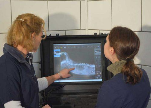 Lienenkämper-Digitales-Röntgen