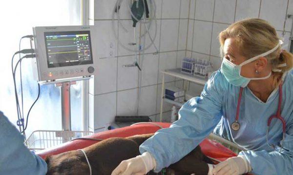 Lienenkämper-Weichteil-Operationen02